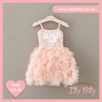 Itty Bitty 2017 Pink Tutu Dresses with 3D Flowers Children