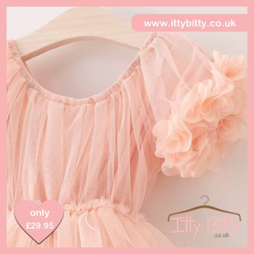 Itty Bitty Mia Dress