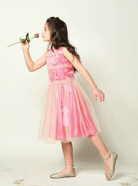 Disney Boutique Aurora princess Pink Dress with Ruffled Bodice Dress