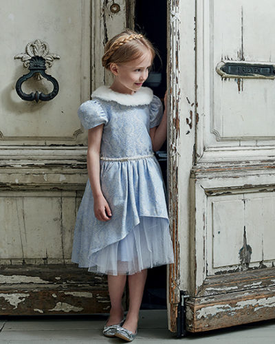 Disney Boutique Cinderella Jaquard Tulle Dress