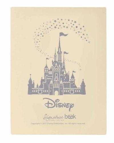 Disney Gift Box Standard
